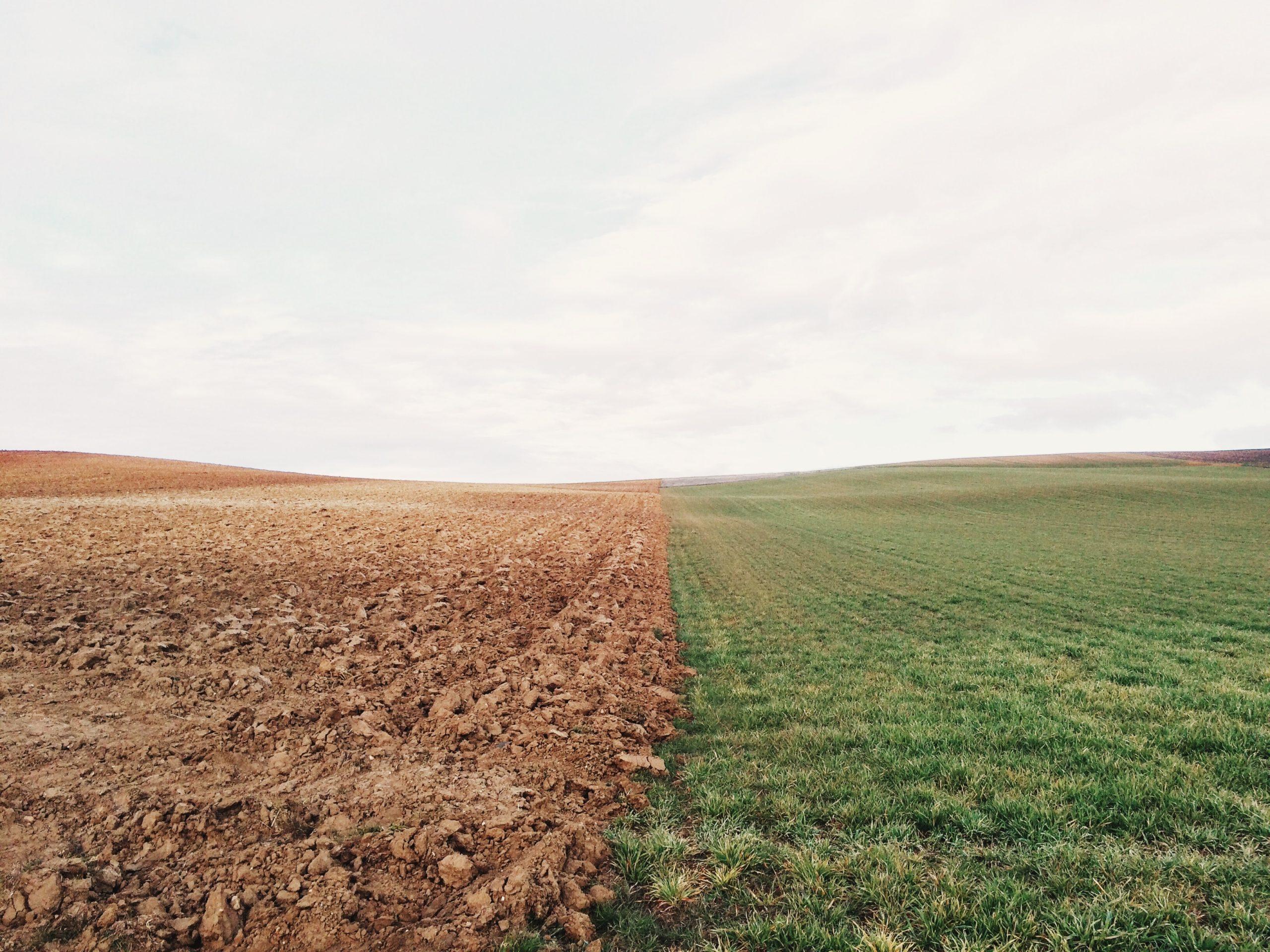 tranformation des terres